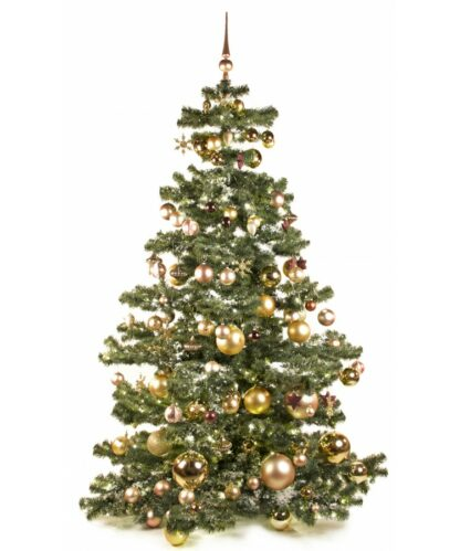 Basic Tree Golden Mocca 210cm-0