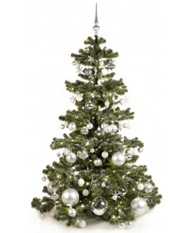 Basic Tree Bright and Silver 180cm-156