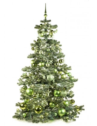 Basic Tree Refreshing Green 210cm-0