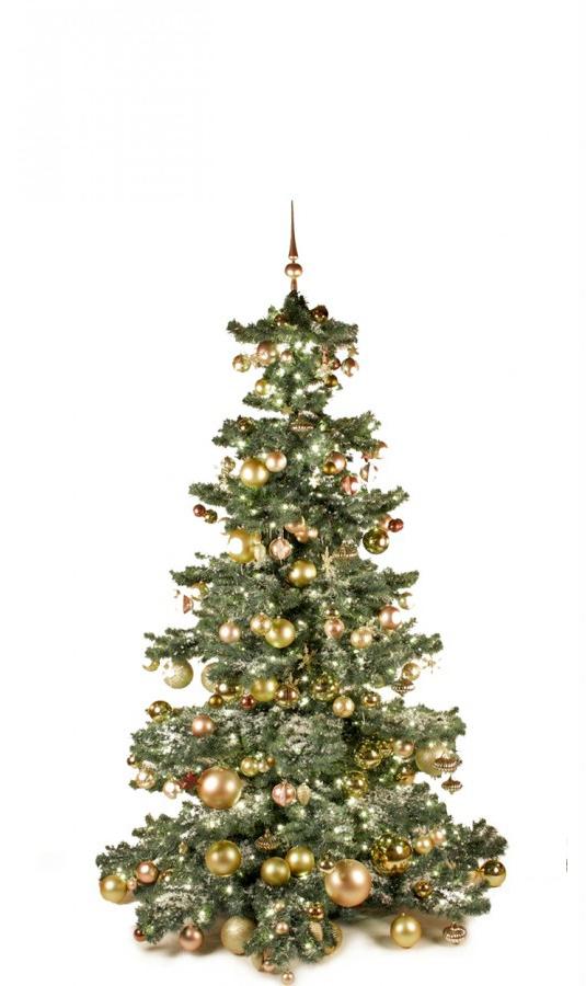 Basic Tree Golden Mocca 180cm-1442