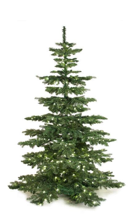Luxury Tree Plain 210cm-0