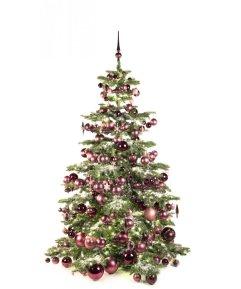 Luxury Tree Purple Milka 210cm-0